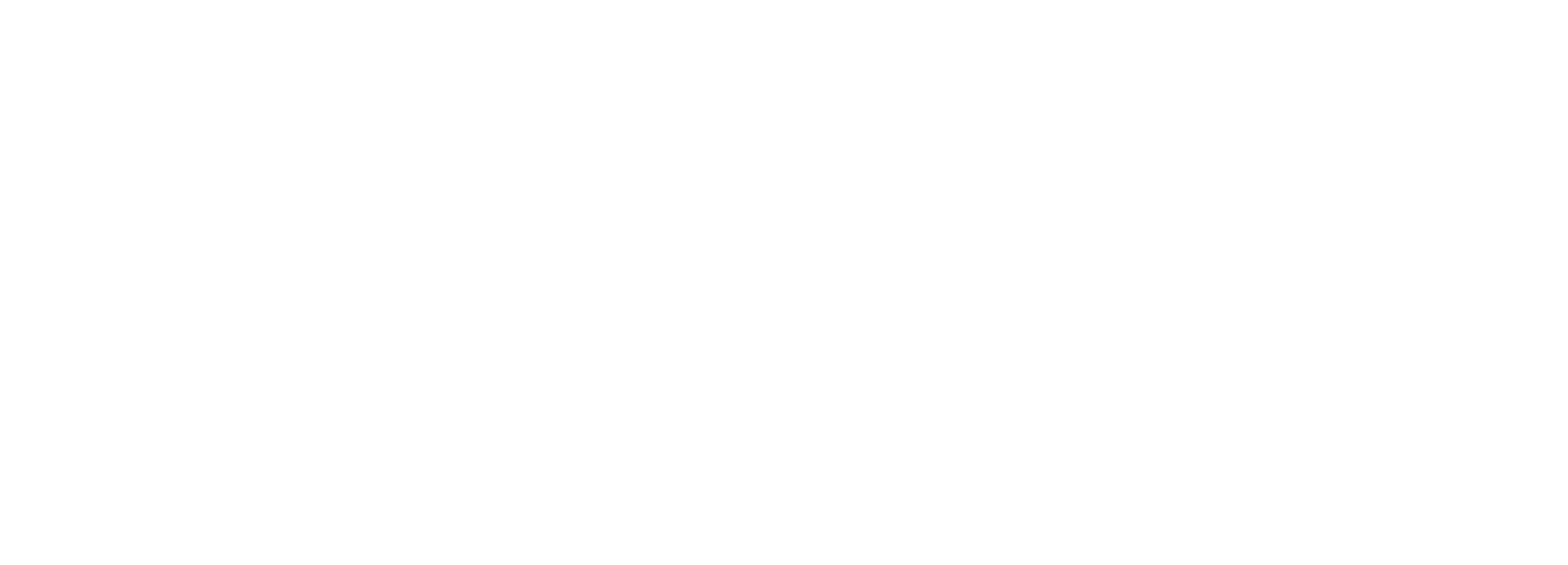 RES GLOBAL GROUP